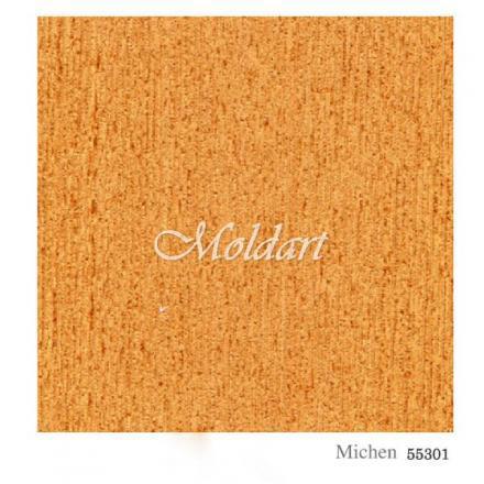 MICHEN 55301