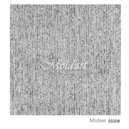 MICHEN 55308