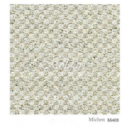 MICHEN 55403