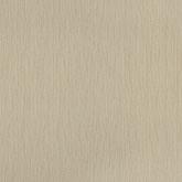 Texture World H2990803