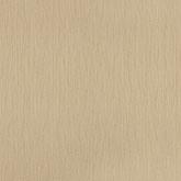 Texture World H2990804