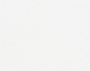 WERNER AISSLINGER 955801